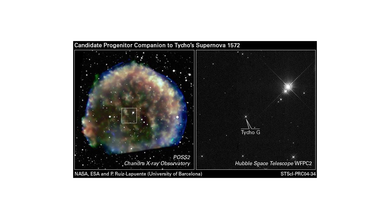 Hubble views suspected stellar survivor from 1572 A.D